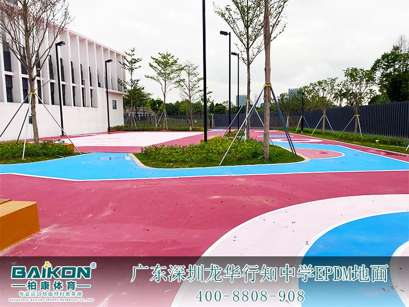 深圳龍華行知中學EPDM4.jpg