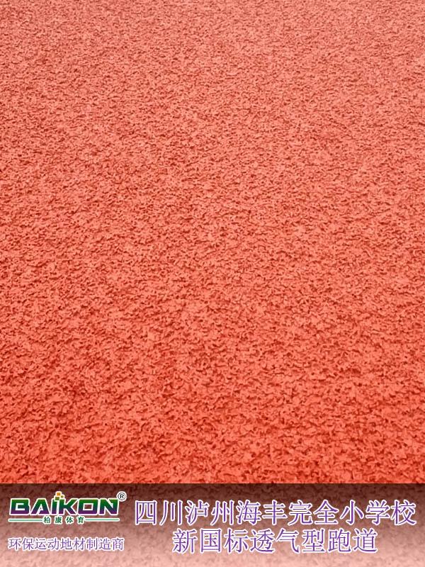 四川瀘州海豐完全小學校新國標透氣型跑道1.jpg